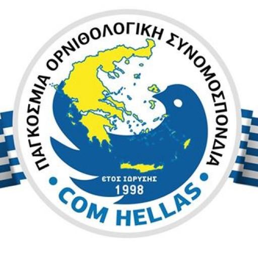 COM Hellas