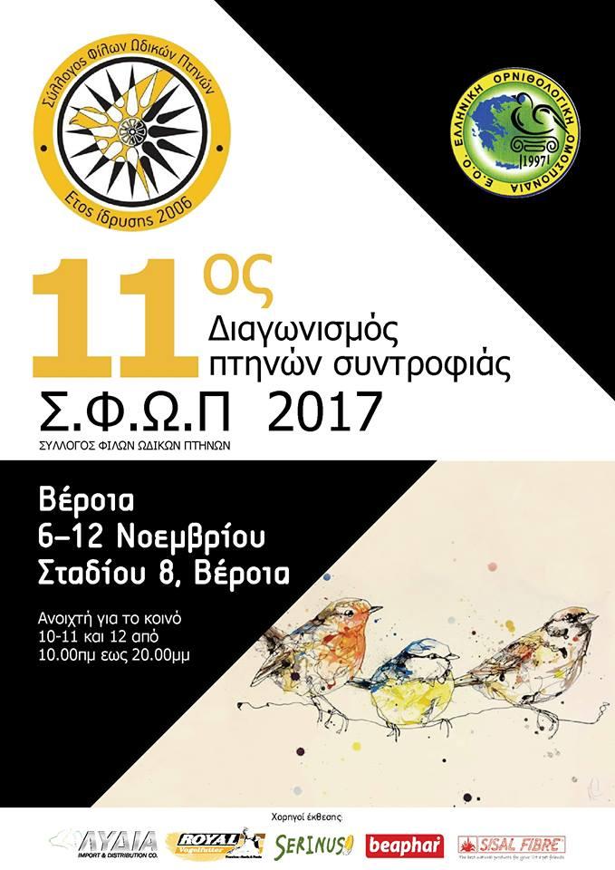 11ος Τοπικός διαγωνισμός 2017