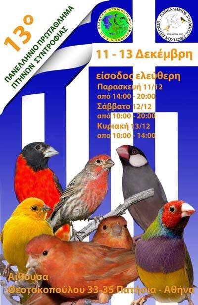 13ος Πανελλήνιος διαγωνισμός ΕΟΟ 2009